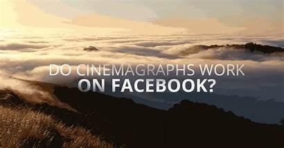 Cinemagraphs Study Case Adparlor Subtle Stunning Bit