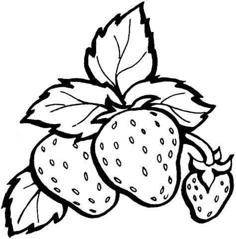 contoh gambar buah buahan semburat warna