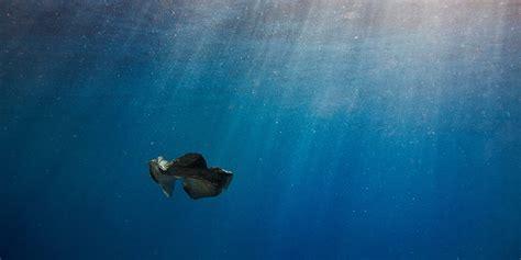 unsere ozeane versinken im plastikmuell wwf deutschland