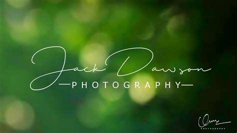 create  signature logo  photography  gimp