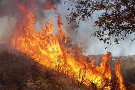climate change  fueling californias wildfires