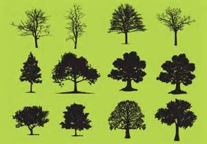 leafless tree vectors photos and psd files free