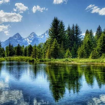 Water Trees Tree Lake Landscape Mountain