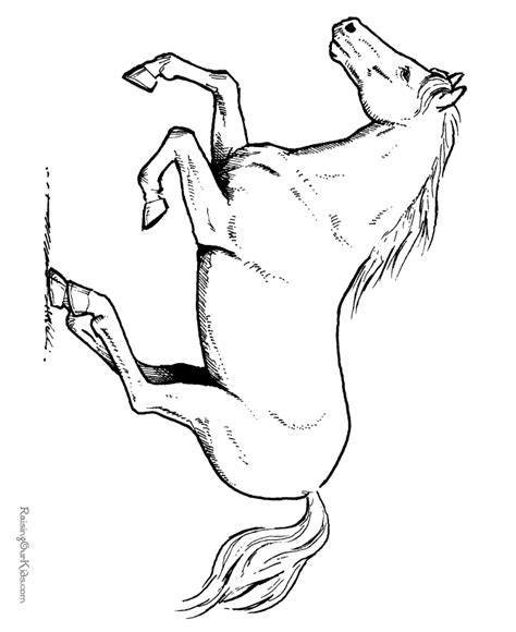 horse coloring pages  printable horse coloring sheet