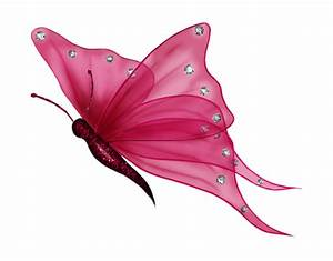 butterfly png | Butterfly4.png Photo by just4udesigns ...