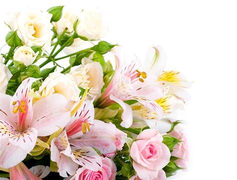 【ここからダウンロード】 壁紙 花束 - 検索された人気のHD壁紙