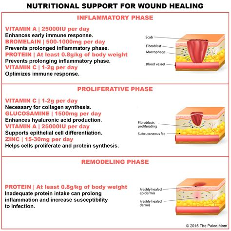 nutritional support  wound healing  paleo mom