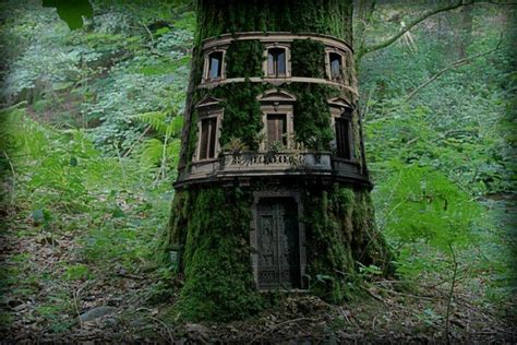 Tree House  Nice Things To See  Pinterest