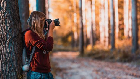 photographer takes pictures  nature hd wallpaper