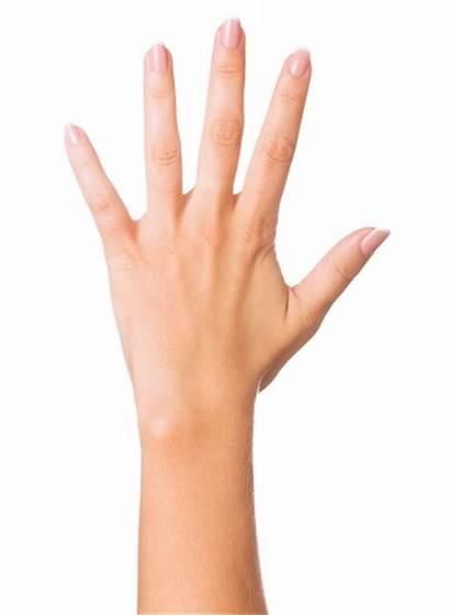 Hands Keloid Scars Aging Doctors Gross Anatomy