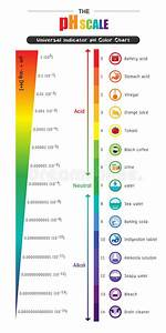 Il Diagramma Di Grafico A Colori Universale Dell U0026 39 Indicatore Ph Della Scala Di Ph Illustrazione