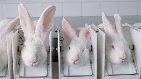 petition australians  cruelty  cosmetics changeorg
