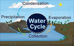 Water Cycle  An Easy Explanation For Kids