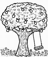 Tree Apple Swing Coloring Pages Swings Drawing Getcoloringpages Getdrawings 726px 24kb sketch template