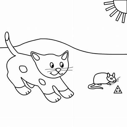 Cat Mouse Printables Coloring Kitten Butterfly