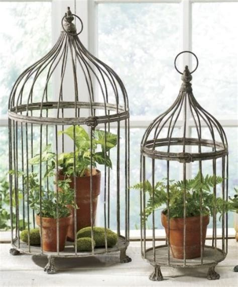 how to decorate bird cages decorating with vintage bird cages