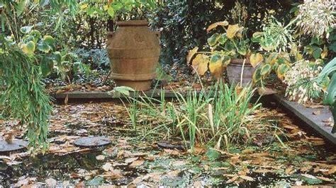 Garten Im Herbst Pflegen by Garten Pflege Im Herbst Und Winter
