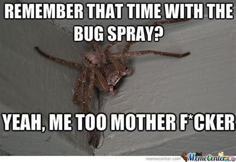 Bug Memes - remember that time with the bug spray by distractingguy meme center