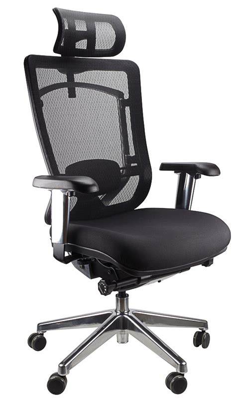 Office Chairs Melbourne by Office Chairs Melbourne Ergonomic Office Chairs Mesh Chairs