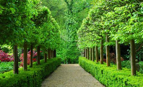 best flower gardens in the world gardening flower and