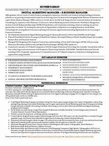 Social media marketing manager resume data entry work at