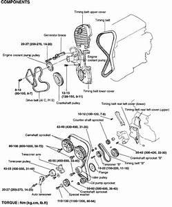 2001 Sonta 4cly Water Pump  Timing Belt Procedure
