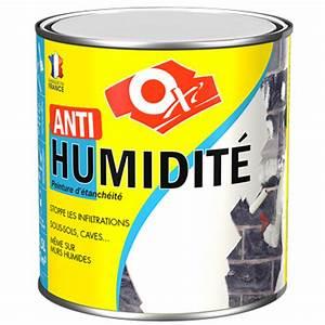 Traitement Anti Humidité : oxi anti humidit ~ Dallasstarsshop.com Idées de Décoration