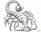 Scorpion Coloring Prehistoric Drawing Printable Scorpions Simple Getdrawings Tail Under Cartoon Neo Argo Categories sketch template