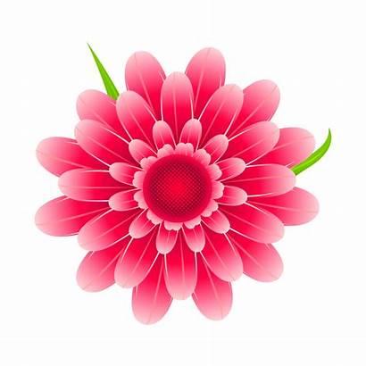 Pink Flower Searchpng Heart Rose Pgn Puskar