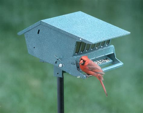 Audubon Bird`s Delight Squirrel Resistant Bird Feeder