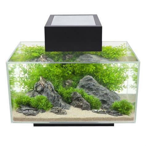 petit aquarium poisson id 233 es et astuces comment cr 233 er un nano aquarium