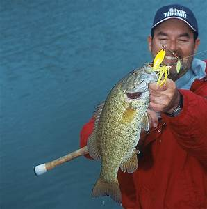 Top Places For Bass Fishing In Pennsylvania