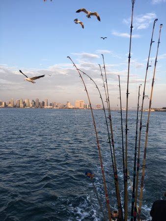 San Diego Sport Fishing Boat Reviews by The Run Sportfishing San Diego Ca Top Tips Before