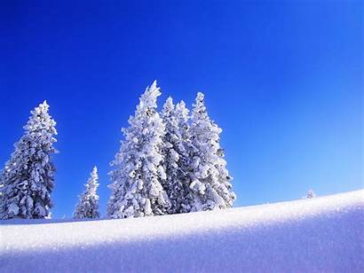 Snow Wallpapers Snowy Background Backgrounds Snowfall Desktop