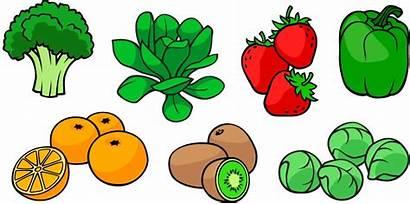 Vitamin Vitamins Soluble Water Fat Clipart Common
