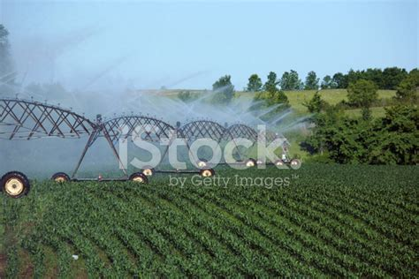 Irrigation Pipes Stock Photos