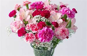 Here are some great Mother's Day flowers offers | Metro News