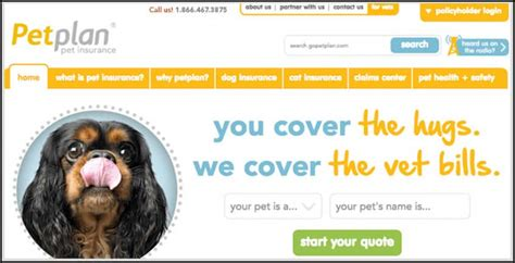 How much does petplan pet insurance cost, on average? Top Petplan Pet Insurance Reviews Tips