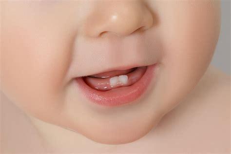 Tips Merawat Kandungan Usia 7 Bulan Kenali Tanda Tanda Bayi Tumbuh Gigi Berbagai Tips