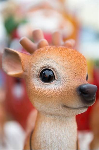 Reindeer Cute Christmas Domain Publicdomainpictures