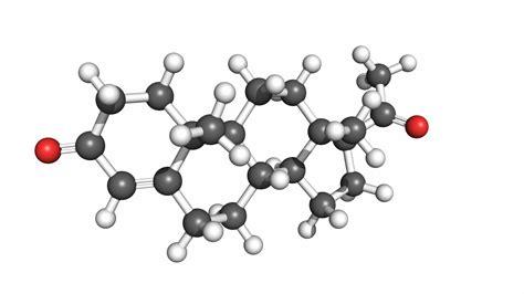 Pastillas De Cytotec Progesterona Qué Es La Hormorna Progesterona