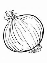 Onion Coloring Pages Colouring Fruits Vegetables Printable Drawing Spinach Template Soup Broccoli Clipart Vegetable Sketch Sheets Templates Catfish Stone Getcolorings sketch template
