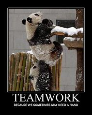Best Teamwork Funny Ideas And Images On Bing Find What You Ll Love
