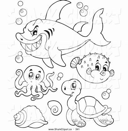 Coloring Sea Pages Clipart Shark Colour Creatures