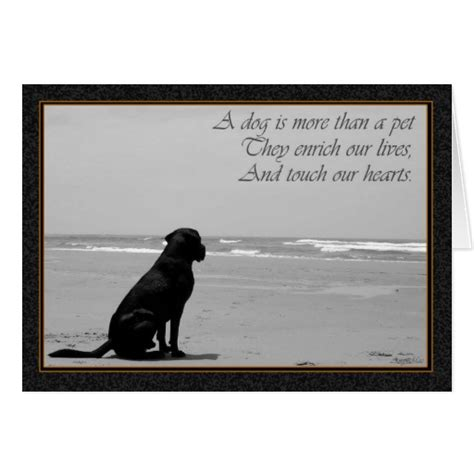 Quotes About Dogs Dying. Quotes About Pets Dying Best Pets ...