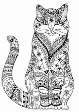 Cat Coloring Cats Pages Wise Very Zentangles Drawn Adult Animals sketch template