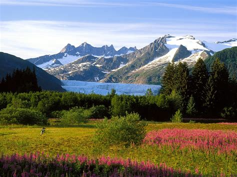 scenic alaska pictures wallpaper wallpapersafari