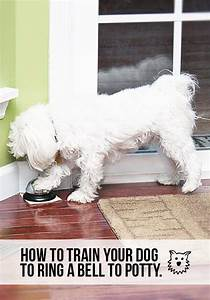 How to train your dog to ring a bell to potty for How to train your dog to pee