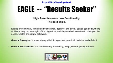 Eagle Bird Type -- Dope Bird Personality Test Results