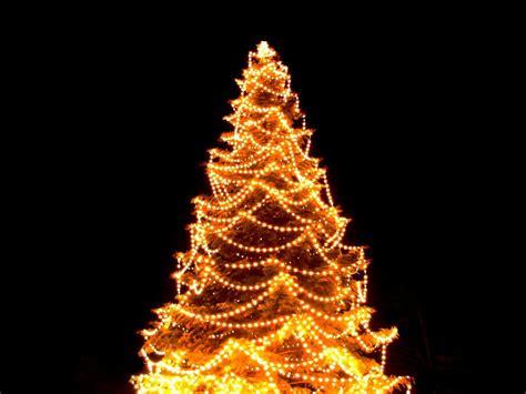 Hang Christmas Tree Lights Visihow